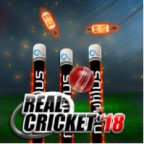 Real Cricket 18 Walkthrough Part 1 to 5